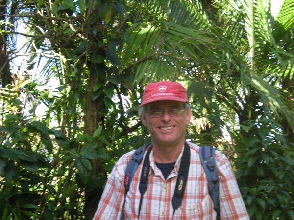 http://www.peacefuloceanview.com/wp-content/uploads/2012/06/ElYunque008.JPG